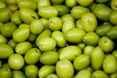 Gröna oliv Arkivbilder