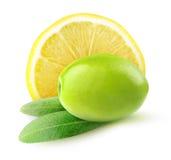 Gröna oliv med citronen Royaltyfria Foton