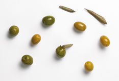 gröna olivgrön Arkivbild