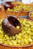 gröna olivgrön Fotografering för Bildbyråer