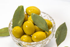 gröna olivgrön Royaltyfri Bild