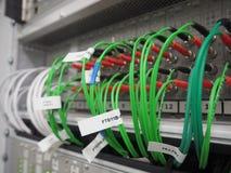 Gröna optiska fiberkablar förbindelse in i kontrollant arkivbilder