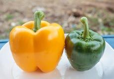gröna orange peppar Fotografering för Bildbyråer