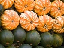 gröna orange pumpor Fotografering för Bildbyråer