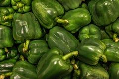 Gröna paprikor fotografering för bildbyråer