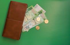 Gröna pengar och brun plånbok royaltyfria foton
