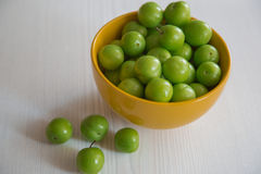 Gröna plommoner Fotografering för Bildbyråer