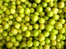 gröna plommoner royaltyfria bilder