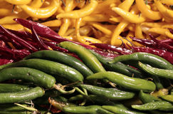 Gröna röda och gula varma chili Fotografering för Bildbyråer