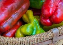 Gröna & röda peppar Royaltyfri Fotografi