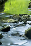 Gröna reflexioner på lugnt vatten av den Blackledge floden, Connec Arkivfoton