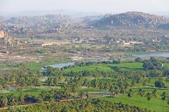 Gröna risfält, gömma i handflatan och floden Tungabhadra i byn av Hampi Palmträd solen, risfält Tropiskt exotiskt arkivfoto
