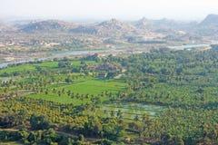 Gröna risfält, gömma i handflatan och floden Tungabhadra i byn av Hampi Palmträd solen, risfält Tropiskt exotiskt arkivbild