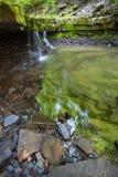 Gröna Rocky Waterfall Arkivbilder