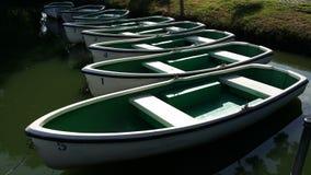 Gröna roddbåtar Arkivfoto