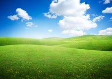 Gröna rullningsfält arkivfoton
