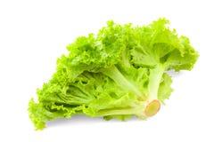 Gröna sidor för sallad för isberggrönsallat Royaltyfri Bild