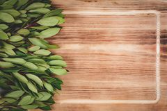 Gröna sidor på trätabellen arkivbild