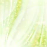 Gröna silk bakgrunder Royaltyfri Foto