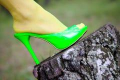 gröna skor royaltyfri fotografi