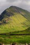 Gröna Skottland Arkivbild