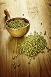 Soybeans i en träsked Royaltyfria Bilder