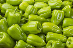 Gröna spansk peppar Royaltyfria Foton