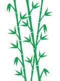 gröna stems för bambu stock illustrationer
