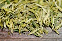 Gröna teblad i stora partier Royaltyfri Foto