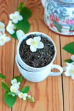 Gröna teblad med jasmin Arkivfoto