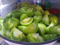 Gröna tomatkilar arkivfoto