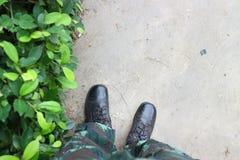 Gröna träd, militära kängor och gångbanor royaltyfri foto