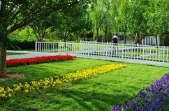 Gröna träd och blomma Arkivfoton