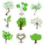 Gröna träd på en vit bakgrund Arkivfoto