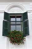 Gröna träfönsterslutare för klassiker och röda blommor på ett lantligt Fotografering för Bildbyråer