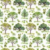 gröna trän Parkera skogmodellen med träd seamless modell vattenfärg royaltyfria bilder