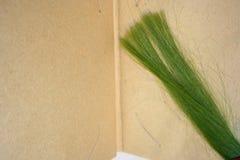 Gröna trådar av hår Arkivfoto