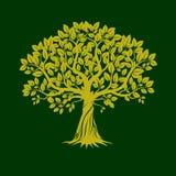 gröna trees också vektor för coreldrawillustration Fotografering för Bildbyråer
