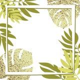 Gröna tropiska sidor med ramen Royaltyfri Foto