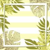 Gröna tropiska sidor med ramen görad randig bakgrund Royaltyfria Foton
