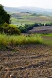 Gröna Tuscany kullar Arkivfoto