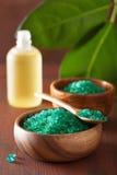 Gröna växt- salta och nödvändiga oljor för sund brunnsort badar royaltyfri fotografi