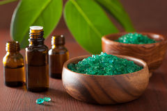 Gröna växt- salta och nödvändiga oljor för sund brunnsort badar fotografering för bildbyråer