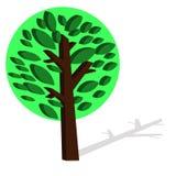 Gröna växter för tecknad film. stock illustrationer
