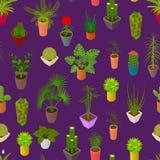 Gröna växter i för modellbakgrund 3d för kruka sömlös isometrisk sikt vektor Arkivfoton