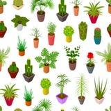 Gröna växter i för modellbakgrund 3d för kruka sömlös isometrisk sikt vektor Arkivfoto