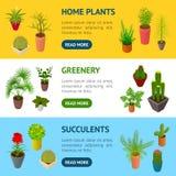 Gröna växter i isometrisk sikt för krukabanerhorisontaluppsättning 3d vektor Royaltyfri Bild