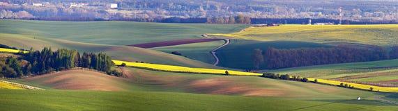 Gröna vårkullar Åkermarker i tjeckiska Moravia Arkivfoton