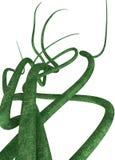 gröna vines vektor illustrationer