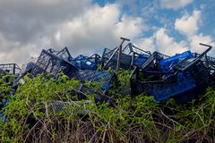 Gröna vinrankor växer till och med blåa plast- askar i en nedgrävning av sopor mot en blå himmel med moln Begreppet av hopp arkivbilder
